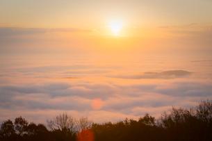 高谷山より朝日と霧の海の写真素材 [FYI02674937]