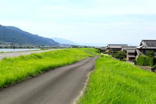輪中堤の道路の写真素材 [FYI02675071]