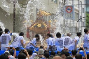 深川八幡祭りの写真素材 [FYI02675289]