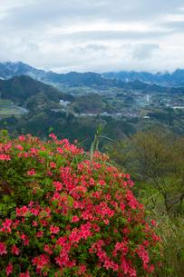 ツツジ咲く国見ヶ丘より高千穂盆地を望むの写真素材 [FYI02675378]