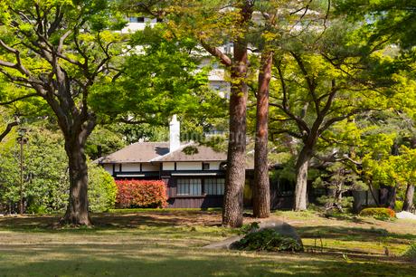 殿ケ谷戸庭園の写真素材 [FYI02675435]
