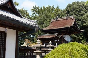 阿智神社の写真素材 [FYI02675446]