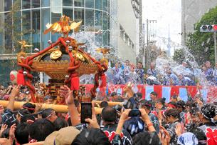 深川八幡祭りの写真素材 [FYI02675455]