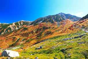 秋の室堂平より歩道の登山者と立山連峰雄山の写真素材 [FYI02675461]