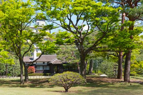 殿ヶ谷戸庭園の春の風景の写真素材 [FYI02675507]