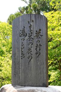 冠山茶の木原の歌碑の写真素材 [FYI02675578]