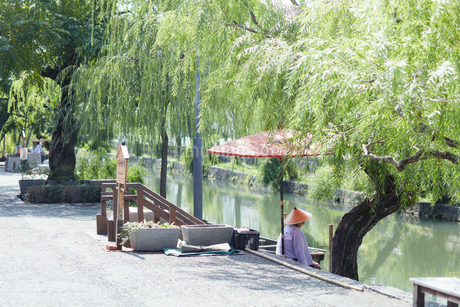 くらしき川舟流しの写真素材 [FYI02675614]