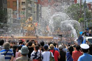 深川八幡祭りの写真素材 [FYI02675925]