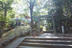 阿智神社の写真素材 [FYI02675931]