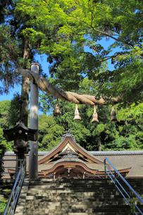大神神社の写真素材 [FYI02675933]