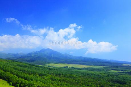 開陽台展望台から望む知床連山の写真素材 [FYI02676000]