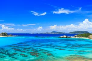 慶良間諸島,渡嘉敷島の阿波連ビーチの写真素材 [FYI02676007]