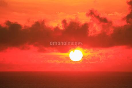 奄美大島 あやまる岬から望む朝日と海の写真素材 [FYI02676028]