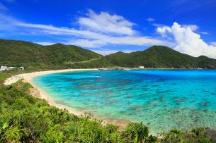 慶良間諸島,渡嘉敷島,クバンダキ展望台から望む阿波連ビーチの写真素材 [FYI02676042]