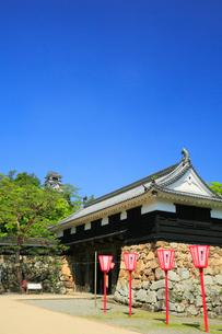 高知城 天守閣と追手門の写真素材 [FYI02676043]