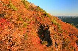 霊山の紅葉の写真素材 [FYI02676081]