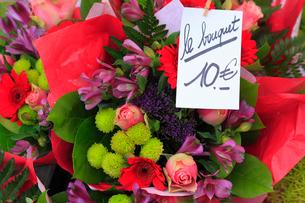 花の写真素材 [FYI02676096]