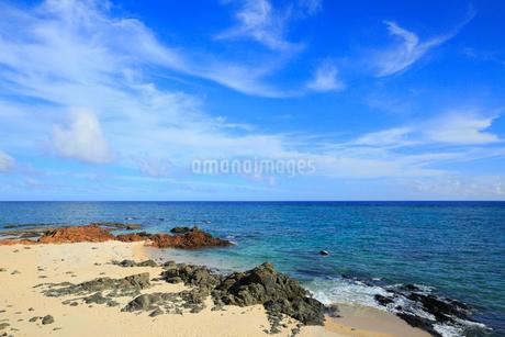 奄美大島 用安海岸の写真素材 [FYI02676099]