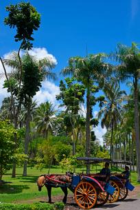 ジャワ島の風景の写真素材 [FYI02676115]