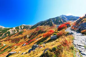 室堂平からの歩道より秋の立山連峰雄山と紅葉の写真素材 [FYI02676171]