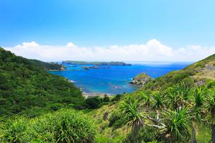小笠原諸島父島・中山峠より南島方向を望むの写真素材 [FYI02676186]