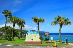奄美大島 大浜海浜公園より望む東シナ海の写真素材 [FYI02676238]