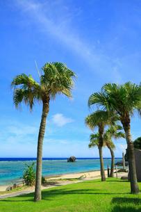 奄美大島 大浜海浜公園より望む東シナ海の写真素材 [FYI02676251]