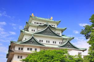 名古屋城の写真素材 [FYI02676297]