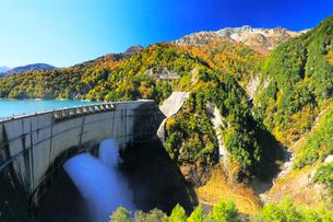 秋の立山・黒部ダム観光放水と快晴の空に紅葉の写真素材 [FYI02676359]