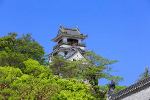 高知城の天守閣の写真素材 [FYI02676372]