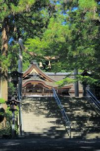 大神神社の大しめ縄の写真素材 [FYI02676381]