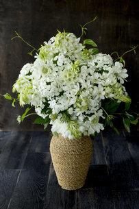 初夏の白い花をたっぷり活けたフラワーアレンジメントの写真素材 [FYI02676394]