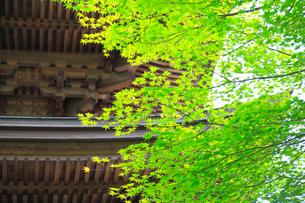 遠野の里 福泉寺の写真素材 [FYI02676403]