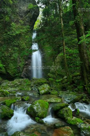 龍王の滝の写真素材 [FYI02676435]