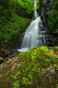 筥滝と新緑の写真素材 [FYI02676477]