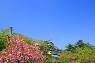 花巻温泉のサクラの写真素材 [FYI02676493]
