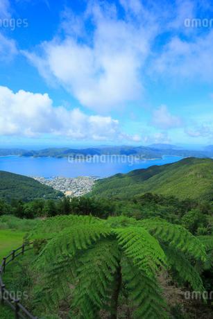 奄美大島 高知山展望台より望む大島海峡と加計呂麻島の写真素材 [FYI02676495]