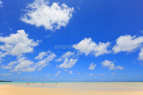 与論島 大金久海岸の百合ヶ浜の写真素材 [FYI02676497]