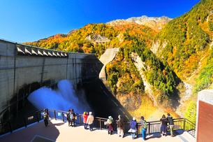 秋の立山・黒部ダム観光放水と快晴の空に紅葉の写真素材 [FYI02676499]