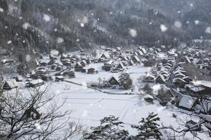 荻町城跡展望台から望む雪景色の白川郷の写真素材 [FYI02676555]