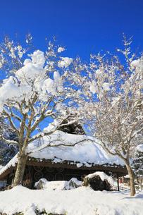 雪景色の飛騨の里の写真素材 [FYI02676560]