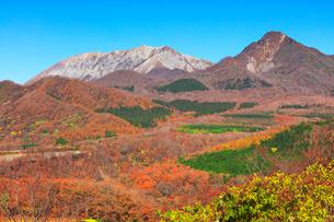 鬼女台より望む紅葉の大山と烏ヶ山の写真素材 [FYI02676636]
