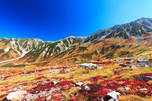 秋の室堂平より立山連峰雄山と紅葉の写真素材 [FYI02676644]