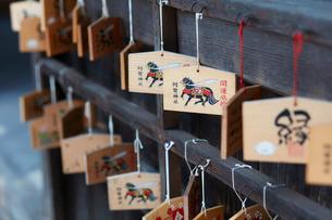阿智神社の写真素材 [FYI02676669]