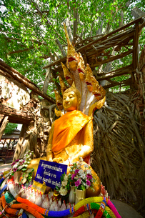 ワット・サン・カラ・タイの写真素材 [FYI02676758]