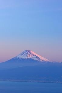 静岡県 富士山 だるま山高原レストハウスよりの写真素材 [FYI02676760]