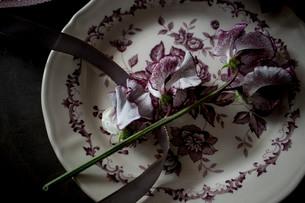 アンティークのお皿とスイートピーの写真素材 [FYI02676830]