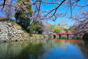姫路城 天守閣と桜に城見橋の写真素材 [FYI02676870]