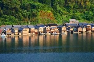 伊根の舟屋の新緑の写真素材 [FYI02676919]
