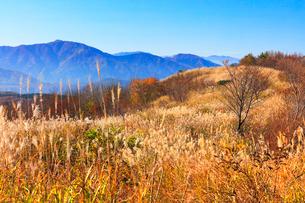 秋の蒜山高原・鬼女台より望む山並みの写真素材 [FYI02676930]